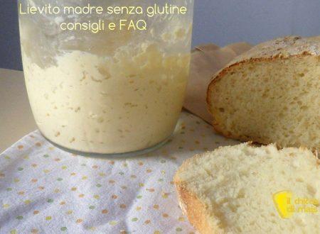 Lievito madre senza glutine: consigli e FAQ