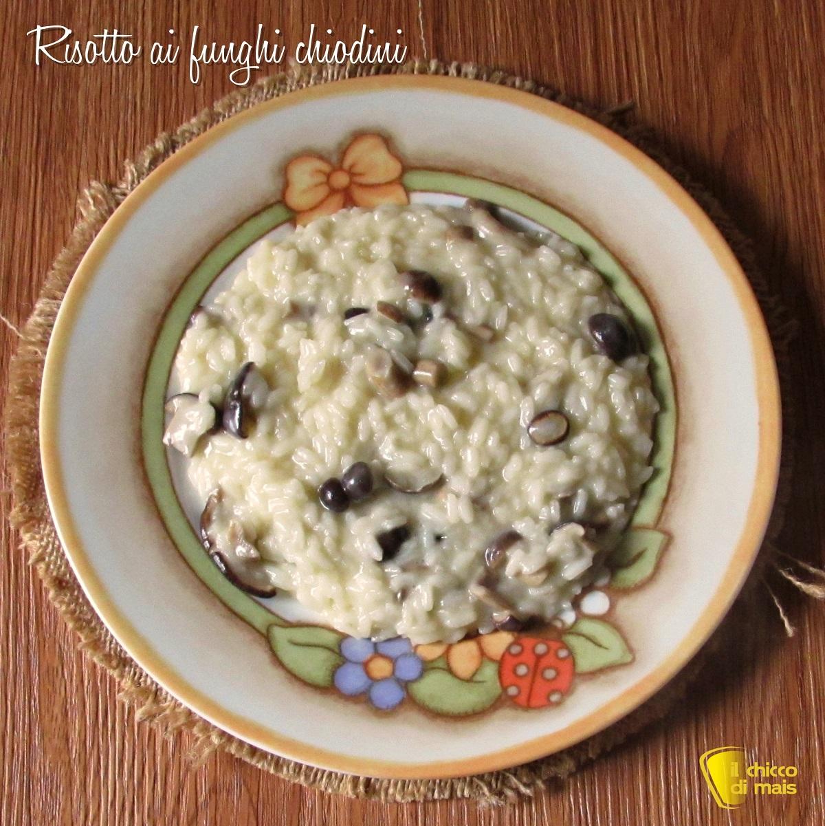 quadrata_risotto ai funghi chiodini cremoso ricetta autunnale il chicco di mais
