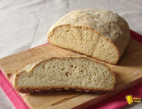 Pane con farina di teff senza glutine, ricetta
