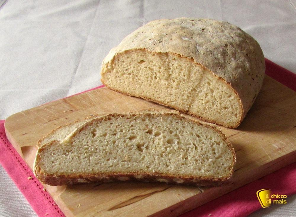 Pane con farina di teff senza glutine ricetta il chicco di mais