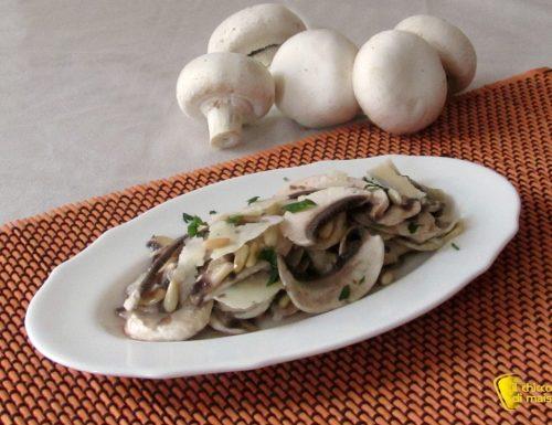 Insalata di funghi crudi con grana e pinoli, ricetta