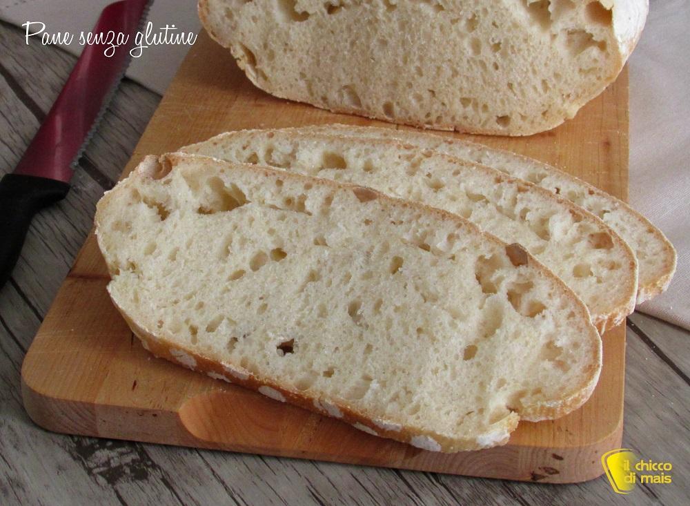 pane senza glutine con farina revolution_chicco di mais