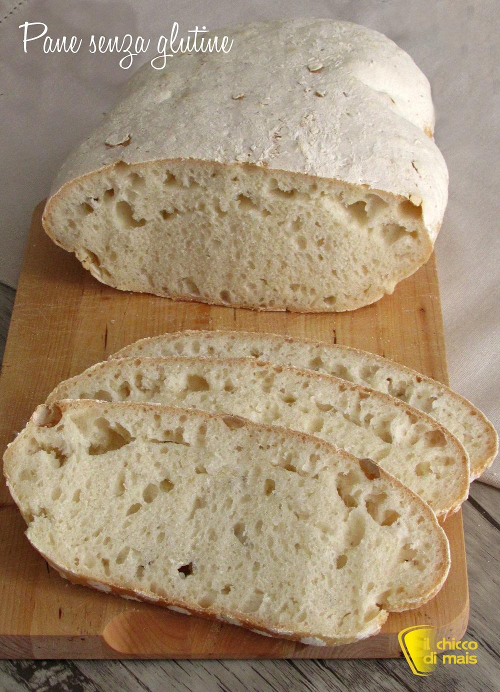 Pane Senza Glutine con Farina Revolution