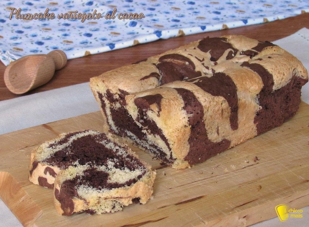 plumcake variegato al cacao ricetta facile con video il chicco di mais