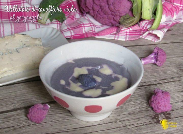 vellutata di cavolfiore viola al gorgonzola ricetta facile e raffinata il chicco di mais