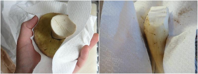 come pulire i funghi porcini alla perfezione trucchi consigli errori da evitare 3 strofiinarli