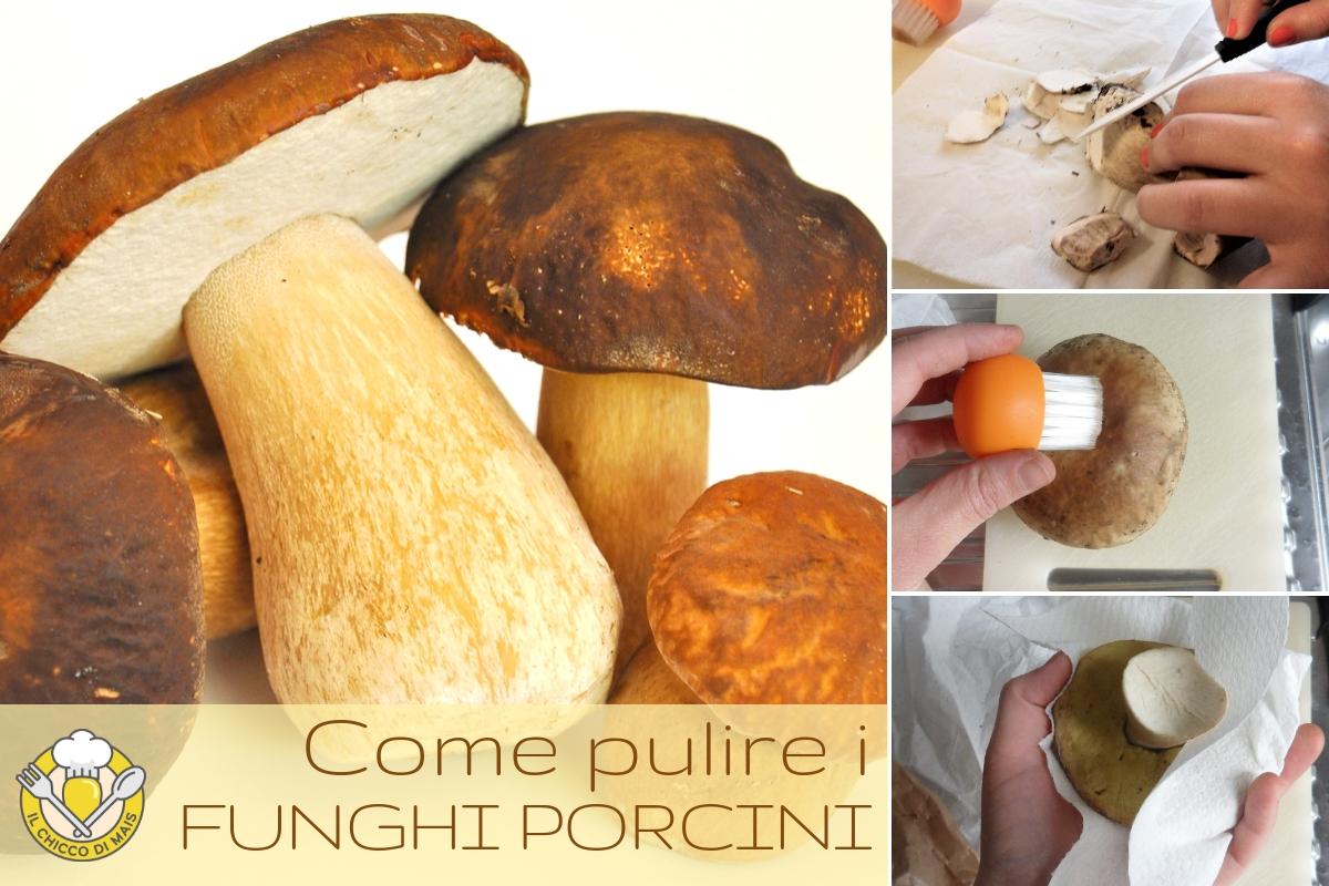 come pulire i funghi porcini alla perfezione trucchi consigli errori da evitare con ricette per cucinarli il chicco di mais