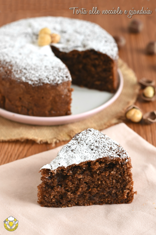 v_ torta senza farina alle nocciole e gianduia ricetta senza glutine facile il chicco di mais