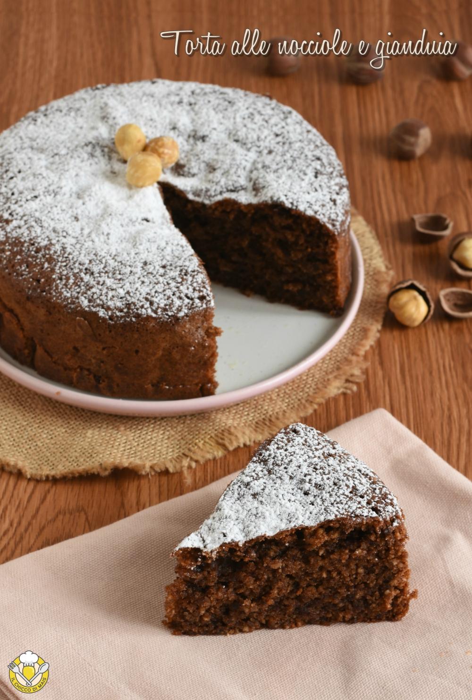 vert2_ torta senza farina alle nocciole e gianduia ricetta senza glutine facile il chicco di mais