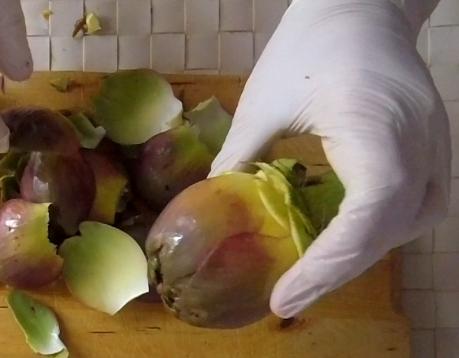 come pulire i carciofi romaneschi mammole violetti cimaroli tutorial con video 5
