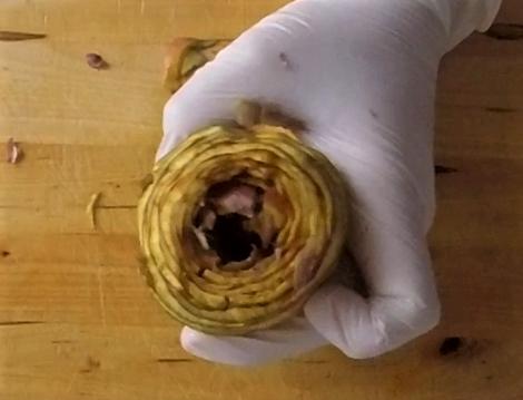 come pulire i carciofi romaneschi mammole violetti cimaroli tutorial con video e consigli per non farli annerire il chicco di mais 15
