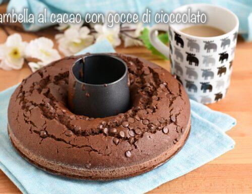 Ciambella al cacao con gocce di cioccolato
