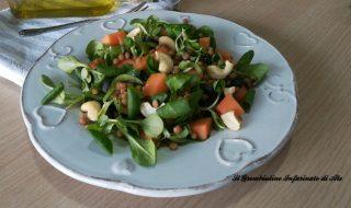 Songino con melone, lenticchie e anacardi