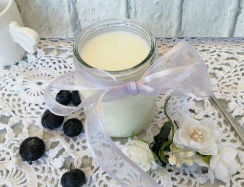 Yogurt fatto in casa senza fermenti
