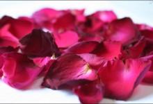 Quaglie ai petali di rosa