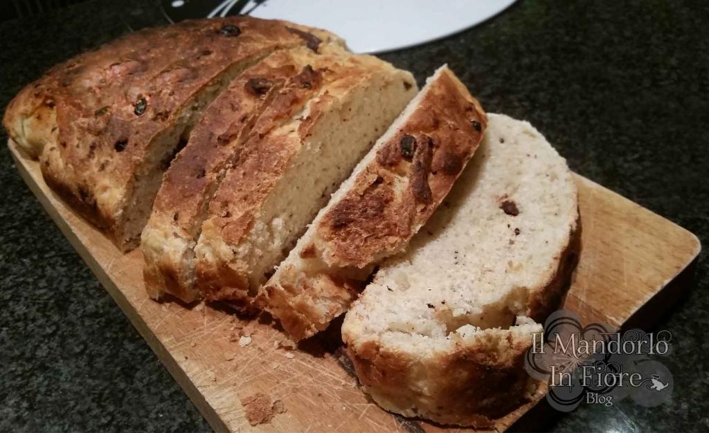 Pan brioche al cioccolato bianco e nero