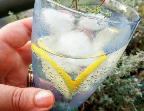 Vodka tonic al timo