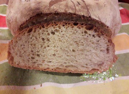 Pane veloce con lievito di birra…