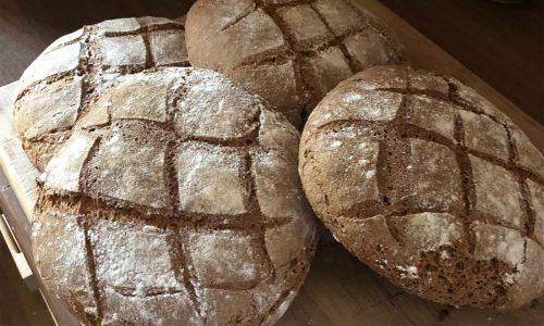 Pane con Farina di Cereali