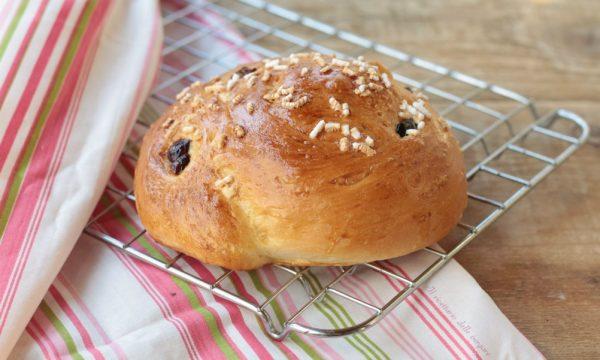 Chiocciola di pan brioche con uvetta