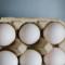 Crema pasticcera ad opera d'uovo!