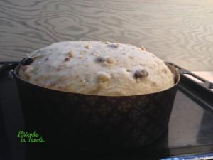 panettone basso vegano con uvetta e mandorle1