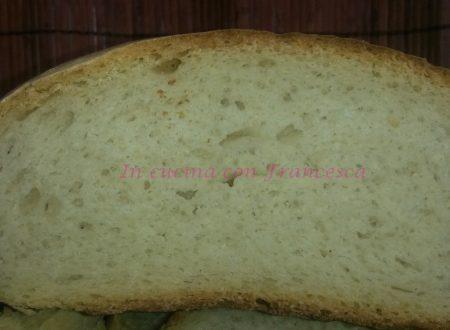 Pane con scarti di lievito madre