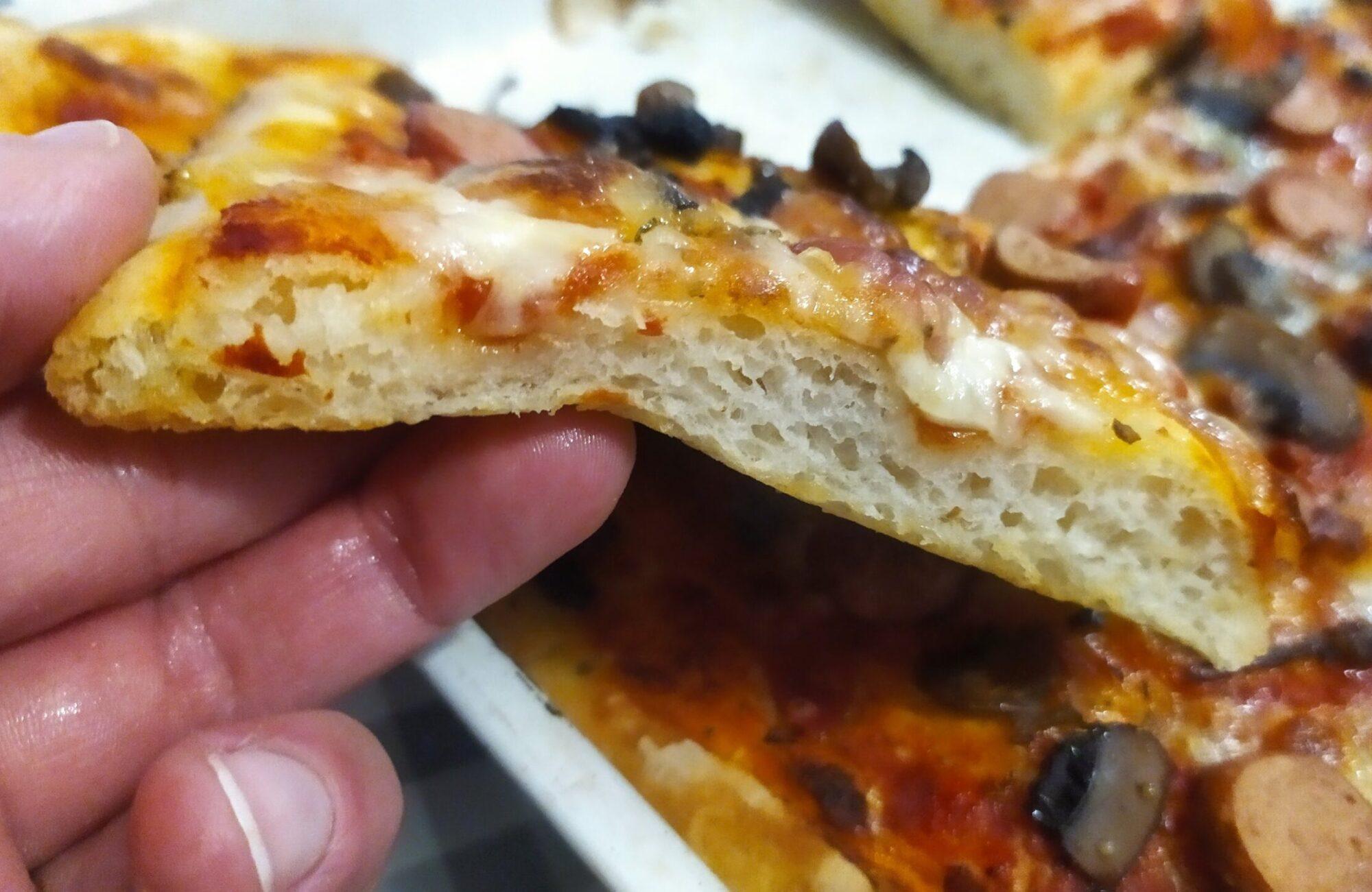 Pizza in giornata con esubero di lievito madre