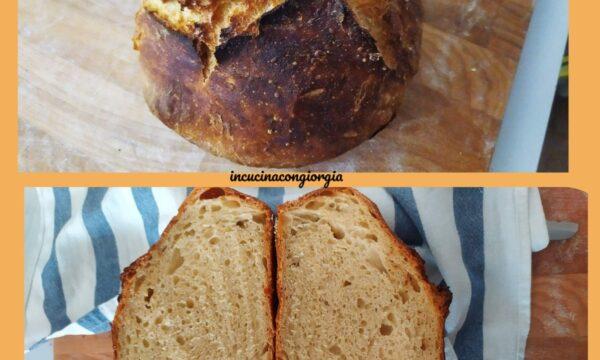 Pane senza impasto – facile per tutti