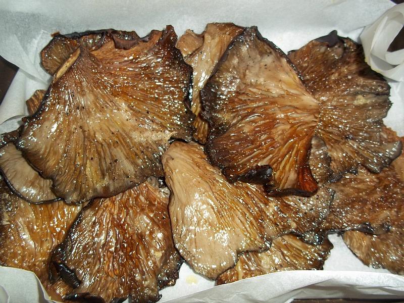 funghi al forno 3