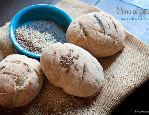 Pane ai cereali con mix di semi