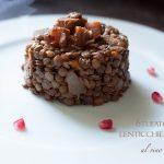Stufato di lenticchie e seitan al vino rosso
