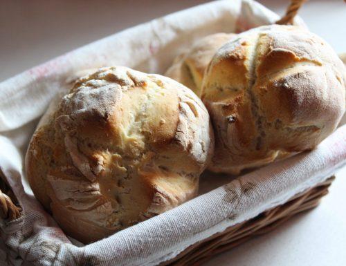 Pane con farina 00 e Manitoba con Monsieur Cousine