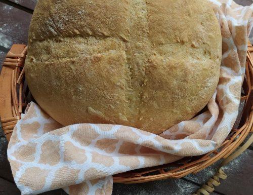 Pane di semola (ricetta semplice)