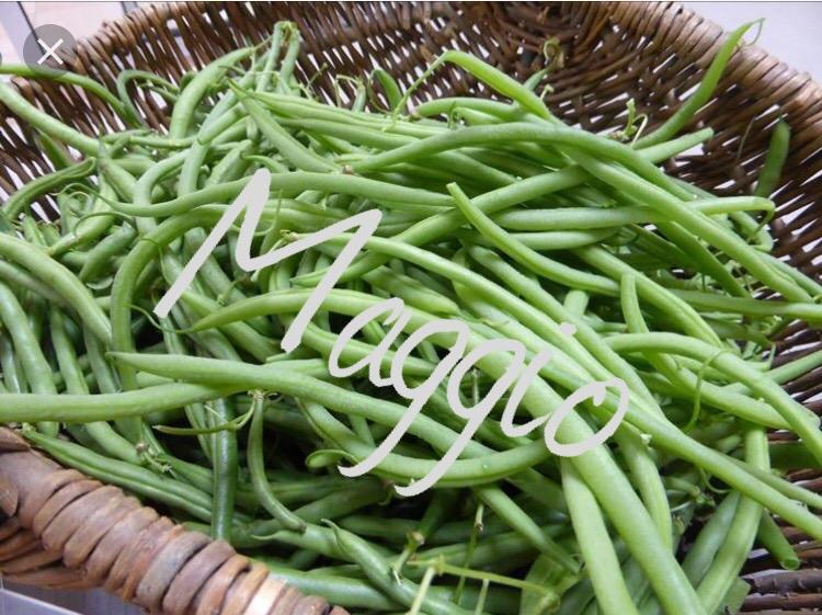 Fagiolini: proprietà, benefici e usi in cucina