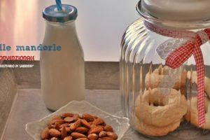 Come preparare il latte vegetale da frutta secca ( mandorle, nocciole, pistacchi )