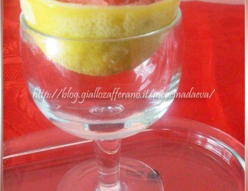Sorbetto anguria e vodka alla pesca