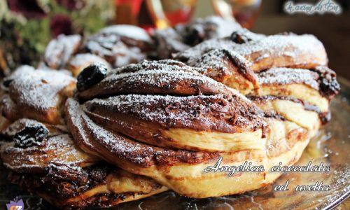 Angelica cioccolato uvetta con pm