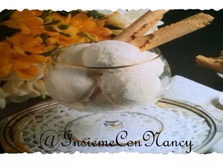 Gelato di soia alla vaniglia