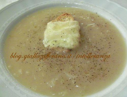 Zuppa di cipolle e alloro con crostone al formaggio |  Ricetta a basso contenuto di lattosio