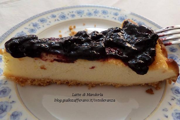 Cheesecake ai frutti di bosco senza lattosio, ricette blog latte di mandorla