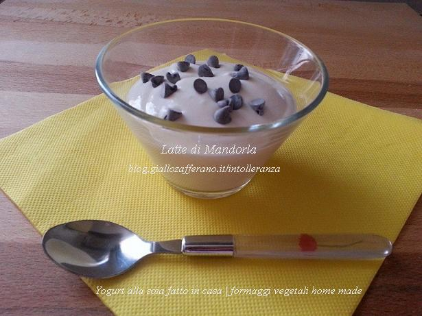 yogurt alla soia fatto in casa_n