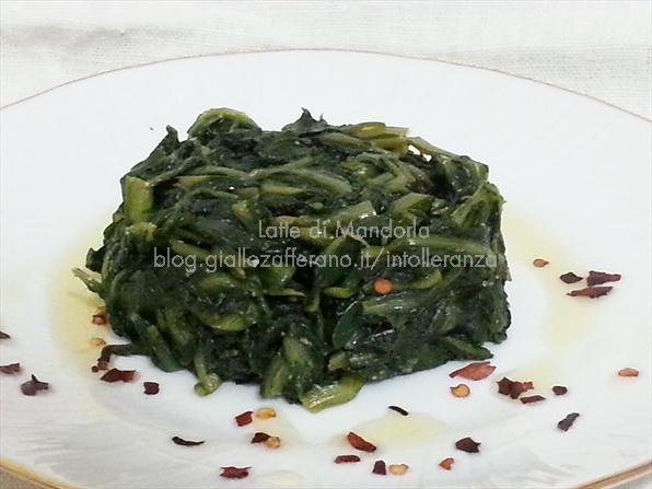 Cicoria ripassata in padella con sale integrale Bio -  Latte di Mandorla blog Copyright © All Rights Reserved