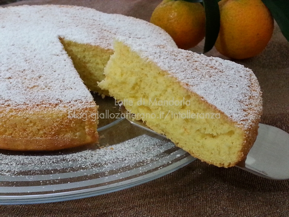 Torta al mandarino senza burro e latteLatte di Mandorla Blog Copyright © All Rights Reserved