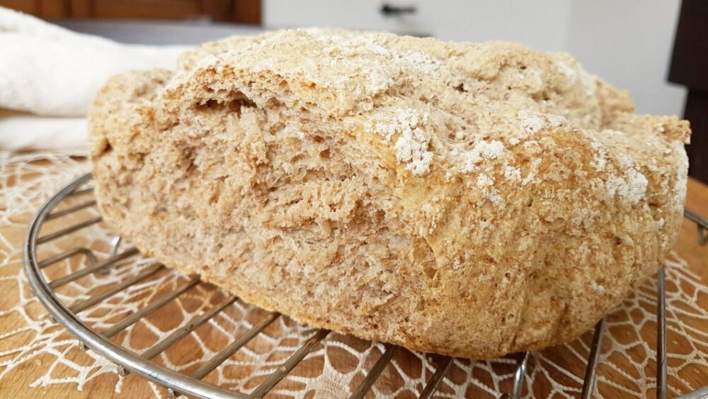 PANE INTEGRALE ricetta pane con lievito di birra cotto nel forno di casa