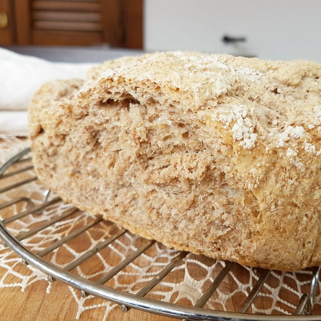 PANE INTEGRALE ricetta pane con lievito di birra pane con farina integrale