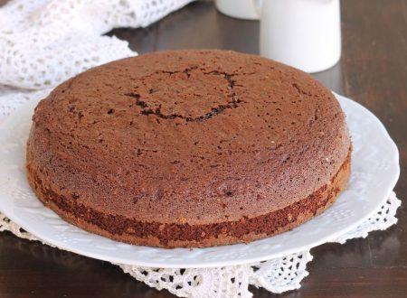 HOT MILK SPONGE CAKE AL CACAO