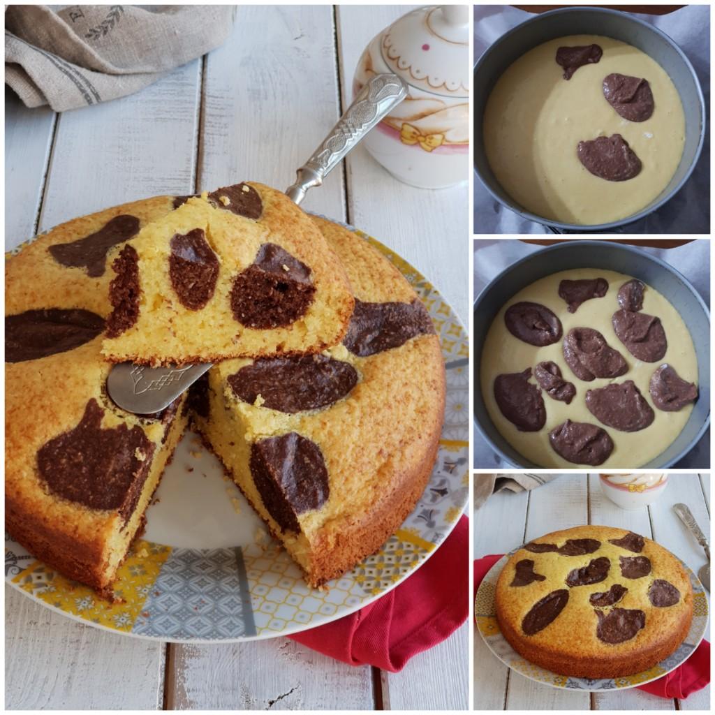 TORTA A MACCHIE COCCO E CACAO ricetta torta bicolore senza burro