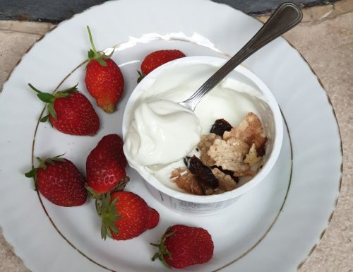 SKYR YOGURT BREAKFAST