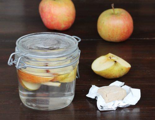 ACQUA MADRE acqua fermentata